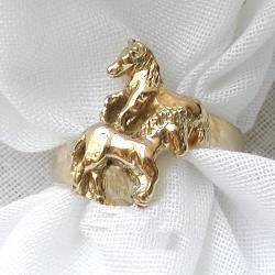 two sturdy ponies on ring